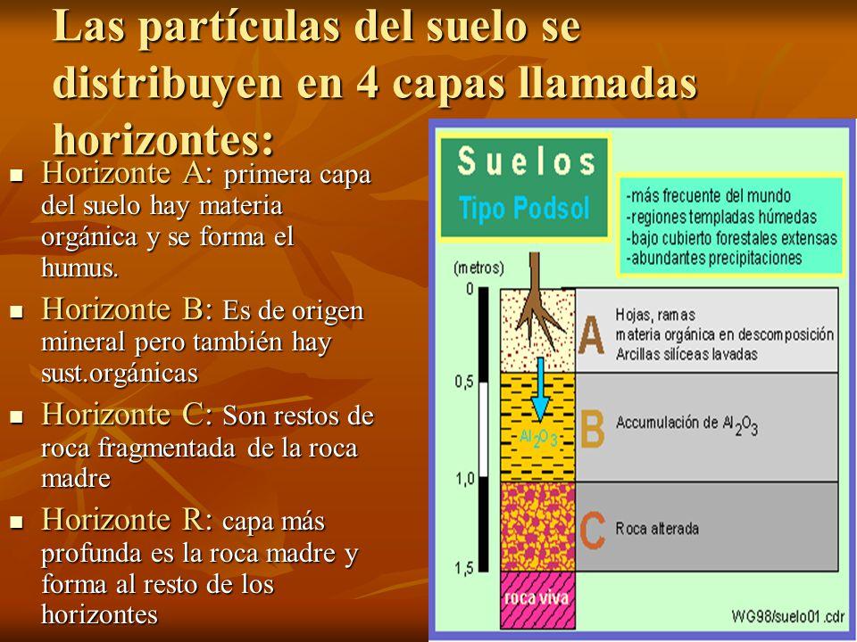 La litosfera y el suelo oa 2 investigar experimentalmente for 4 usos del suelo en colombia