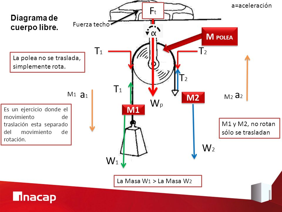 Asombroso Diagrama De Cuerpo Macho Regalo - Anatomía de Las ...