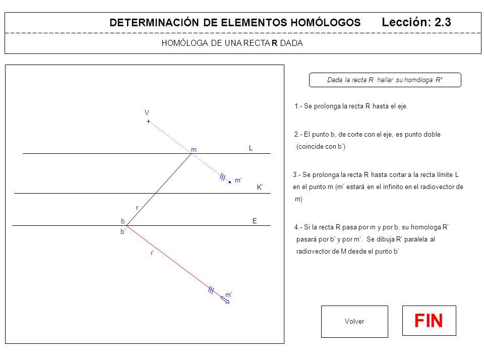 DETERMINACIÓN DE ELEMENTOS HOMÓLOGOS