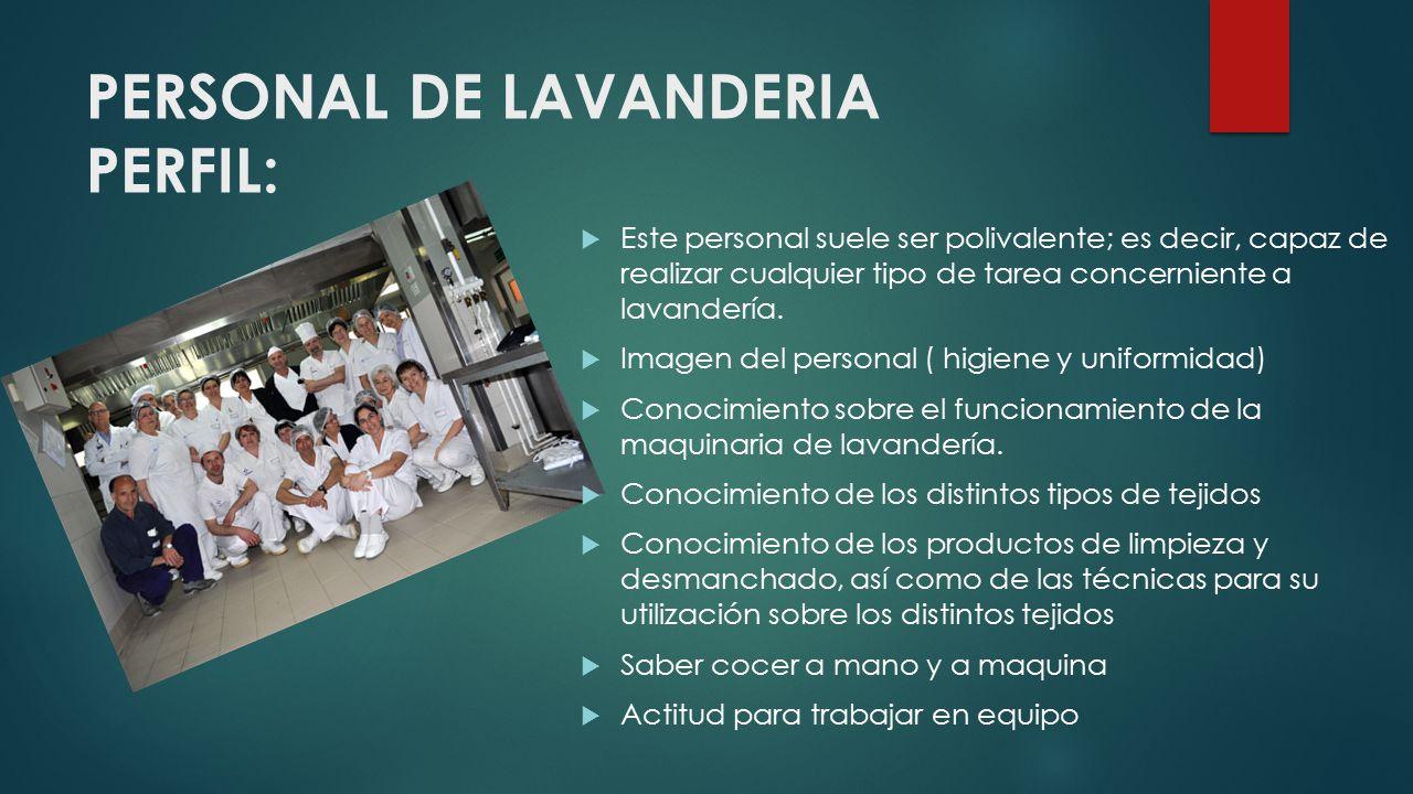 PERSONAL DE LAVANDERIA PERFIL: