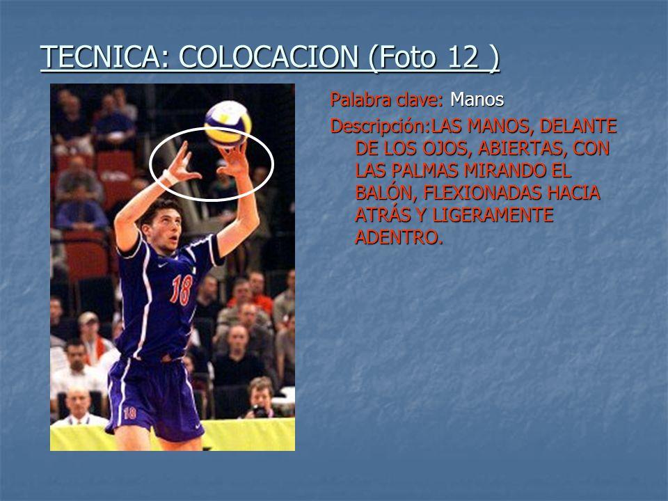 TECNICA: COLOCACION (Foto 12 )