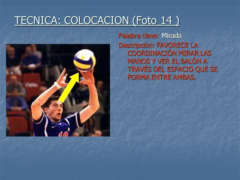 TECNICA: COLOCACION (Foto 14 )