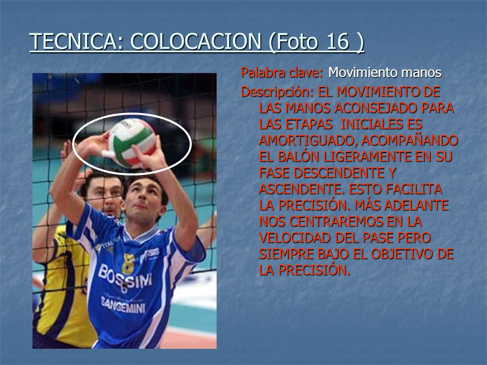 TECNICA: COLOCACION (Foto 16 )