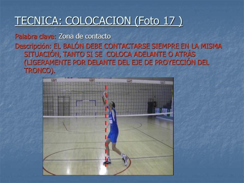 TECNICA: COLOCACION (Foto 17 )