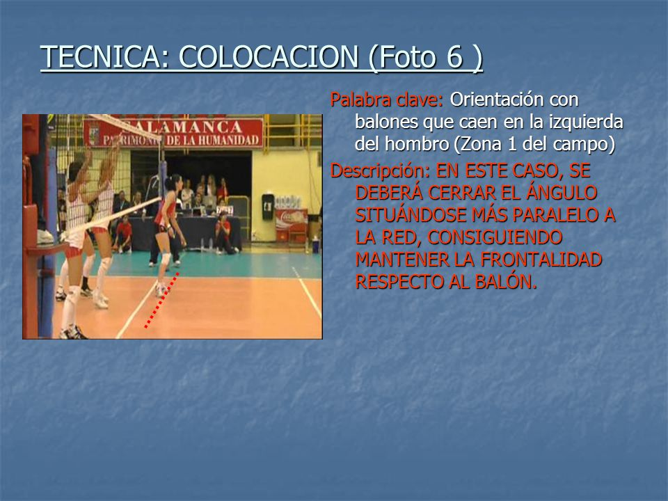 TECNICA: COLOCACION (Foto 6 )