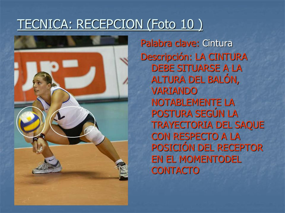 TECNICA: RECEPCION (Foto 10 )