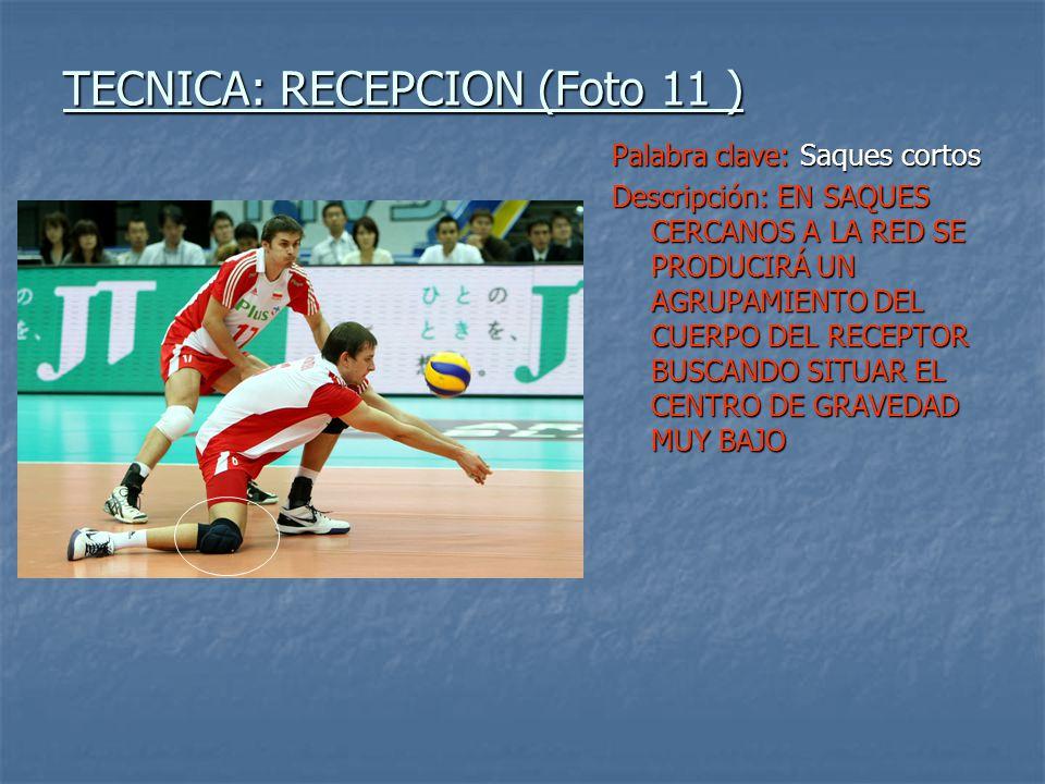 TECNICA: RECEPCION (Foto 11 )