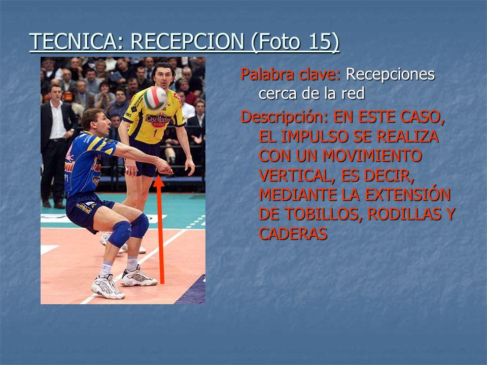 TECNICA: RECEPCION (Foto 15)