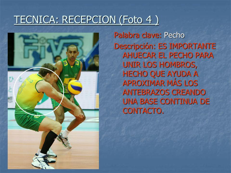TECNICA: RECEPCION (Foto 4 )
