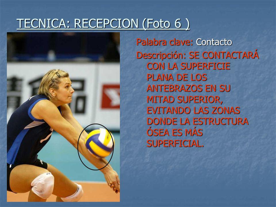 TECNICA: RECEPCION (Foto 6 )