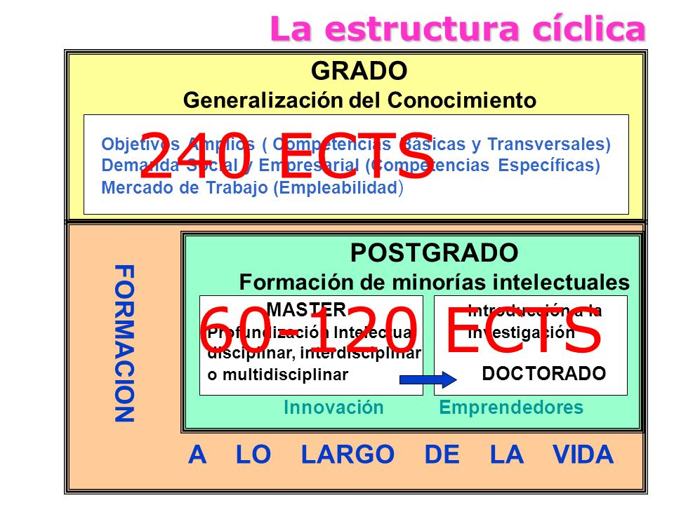 240 ECTS 60-120 ECTS La estructura cíclica A LO LARGO DE LA VIDA GRADO
