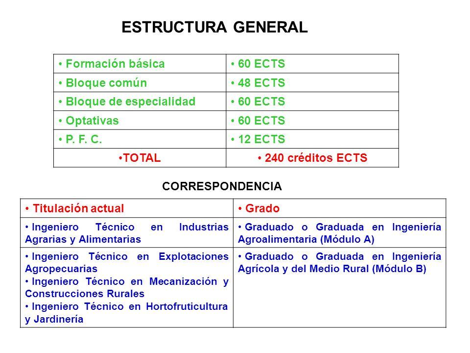 ESTRUCTURA GENERAL Formación básica 60 ECTS Bloque común 48 ECTS