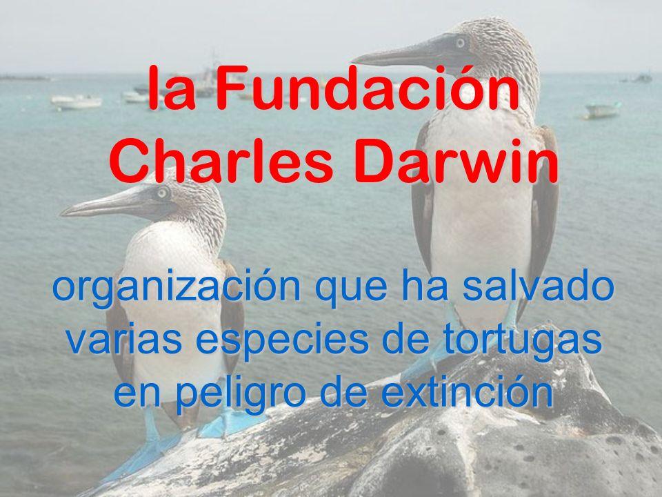 la Fundación Charles Darwin