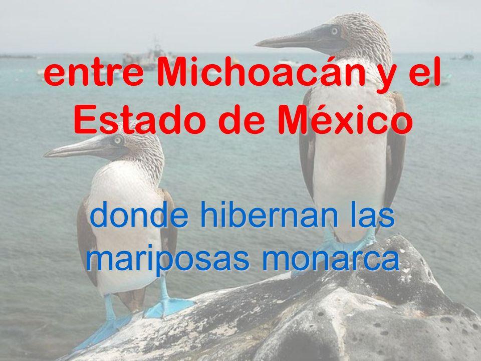 entre Michoacán y el Estado de México