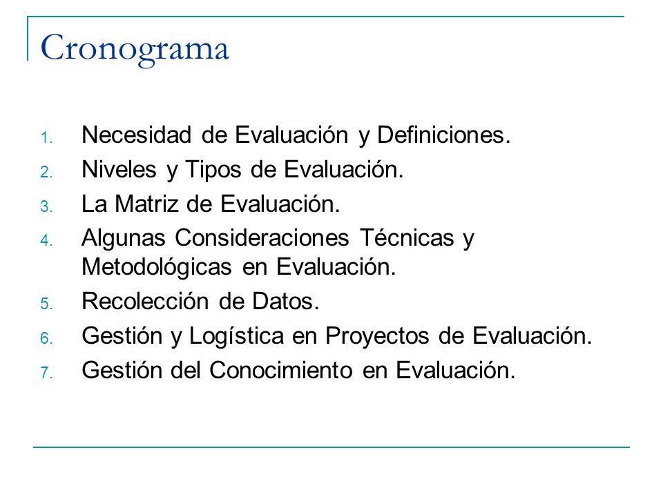 Cronograma Necesidad de Evaluación y Definiciones.