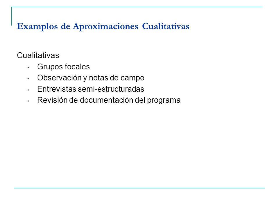 Examplos de Aproximaciones Cualitativas
