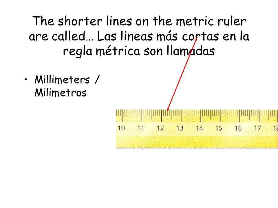 The shorter lines on the metric ruler are called… Las lineas más cortas en la regla métrica son llamadas