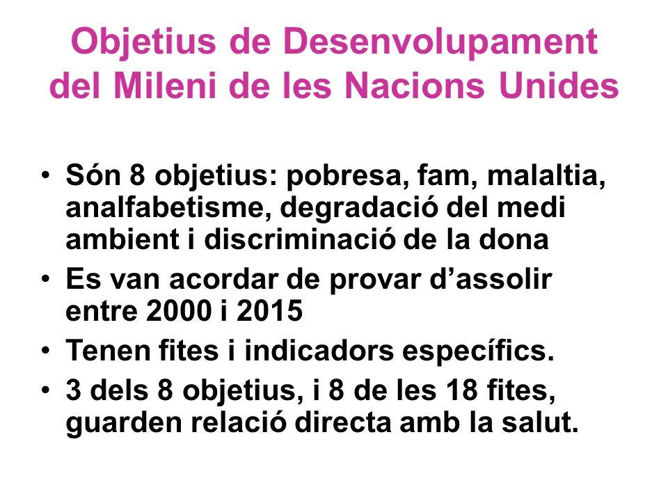 Objetius de Desenvolupament del Mileni de les Nacions Unides
