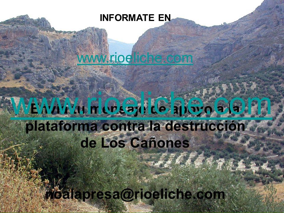 www.rioeliche.com www.rioeliche.com