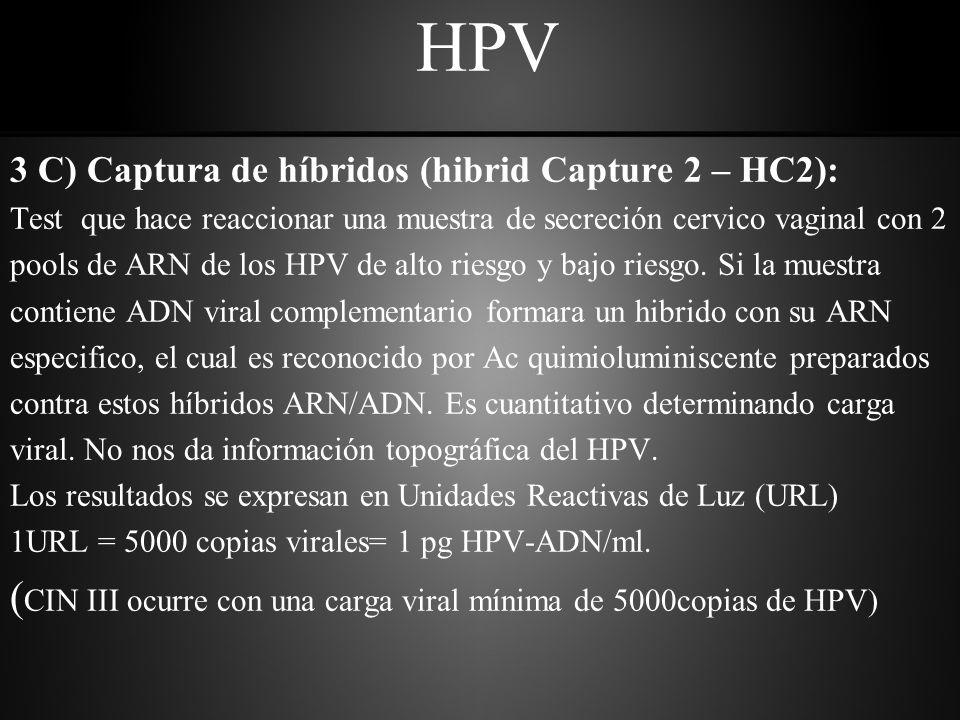 HPV (CIN III ocurre con una carga viral mínima de 5000copias de HPV)