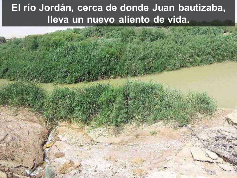 El río Jordán, cerca de donde Juan bautizaba, lleva un nuevo aliento de vida.