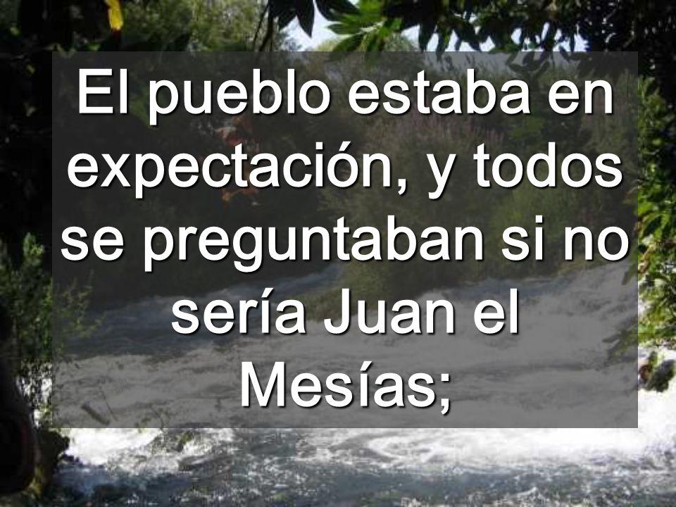 El pueblo estaba en expectación, y todos se preguntaban si no sería Juan el Mesías;