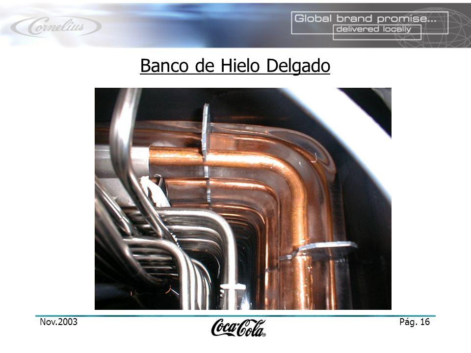 Banco de Hielo Delgado Nov.2003