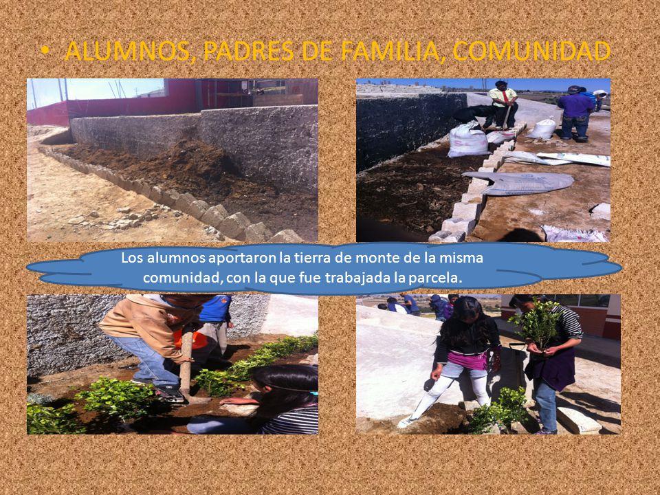 ALUMNOS, PADRES DE FAMILIA, COMUNIDAD