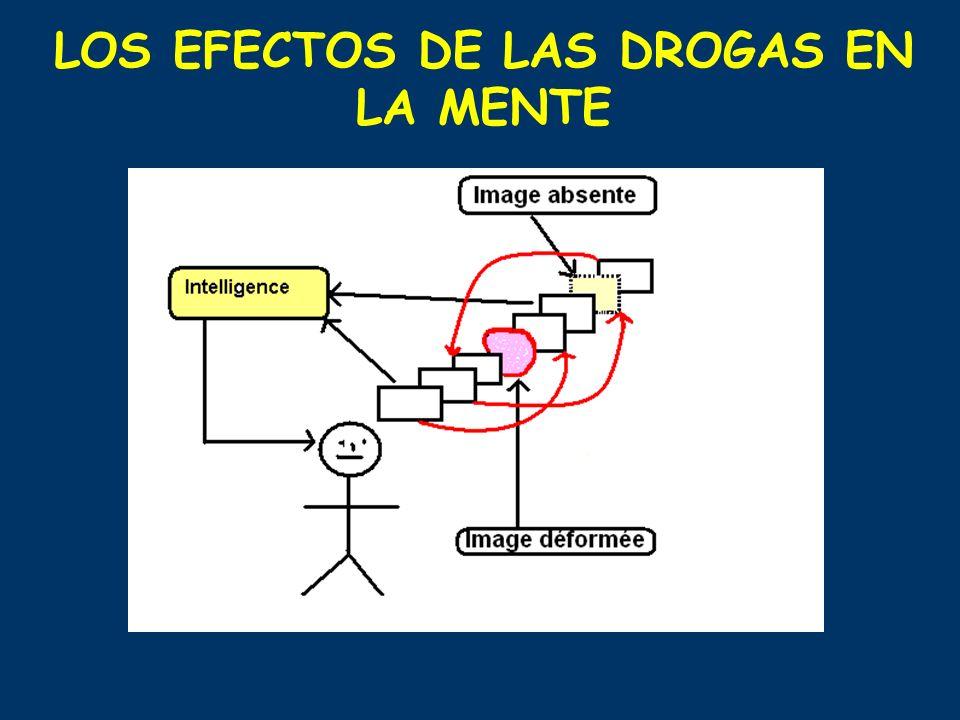 LOS EFECTOS DE LAS DROGAS EN