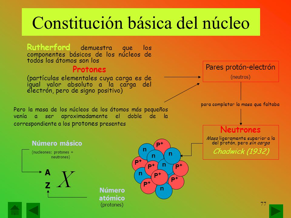Constitución básica del núcleo