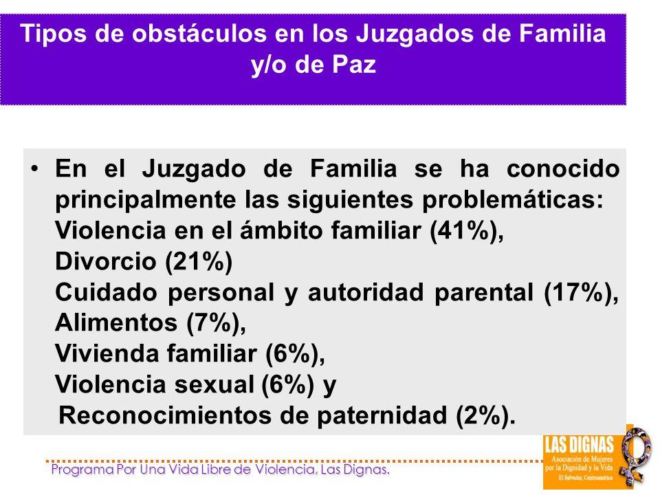 Tipos de obstáculos en los Juzgados de Familia y/o de Paz