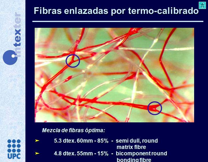 Fibras enlazadas por termo-calibrado