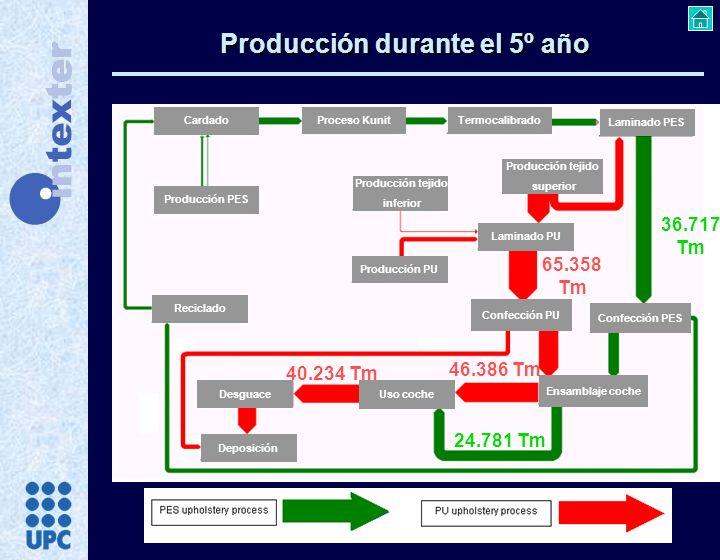 Producción durante el 5º año