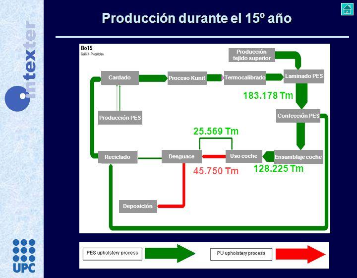 Producción durante el 15º año