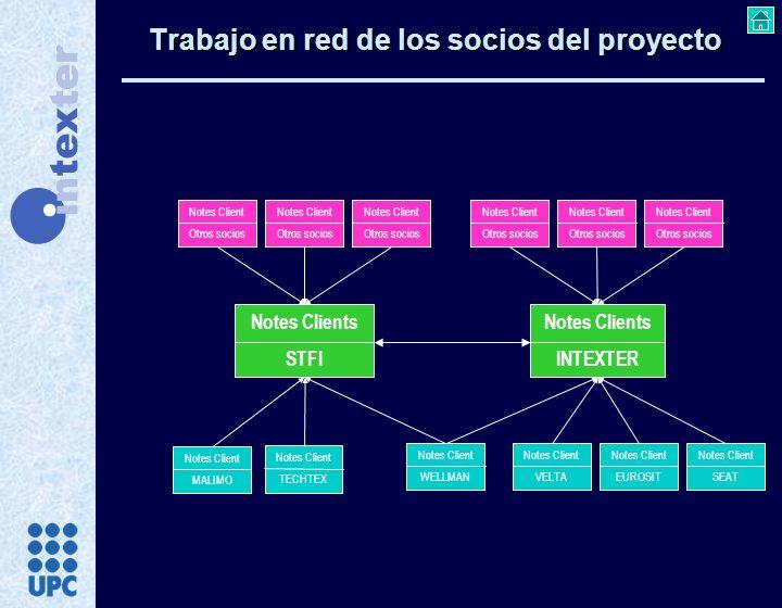 Trabajo en red de los socios del proyecto