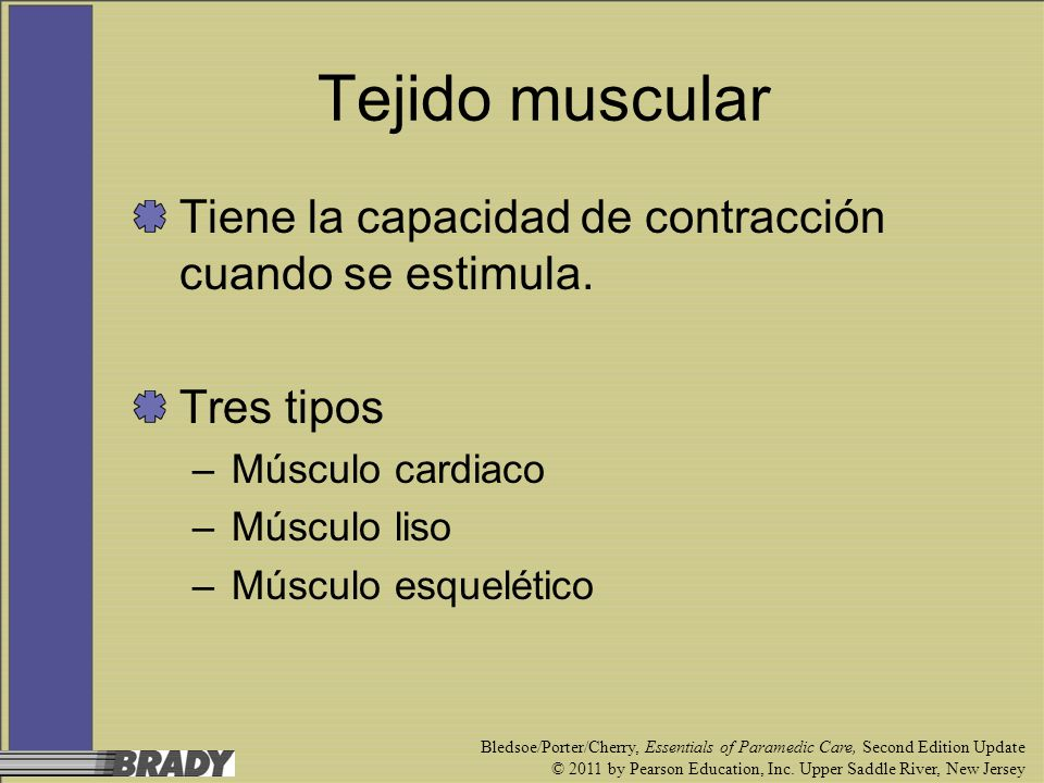 Tejido muscular Tiene la capacidad de contracción cuando se estimula.