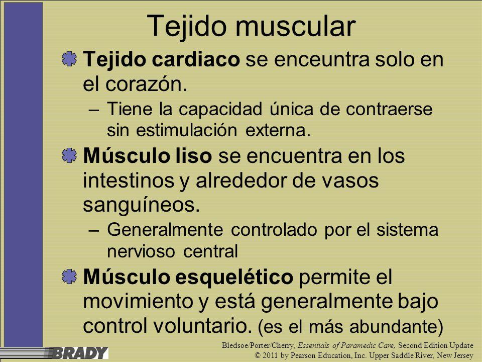 Tejido muscular Tejido cardiaco se enceuntra solo en el corazón.