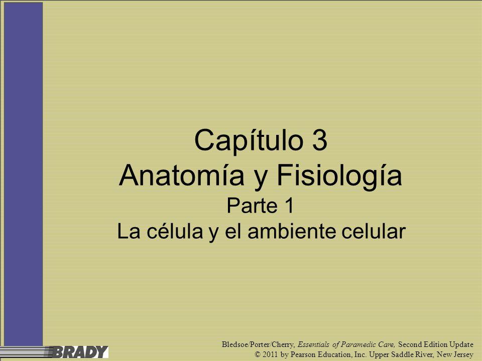 Capítulo 3 Anatomía y Fisiología Parte 1 La célula y el ambiente celular