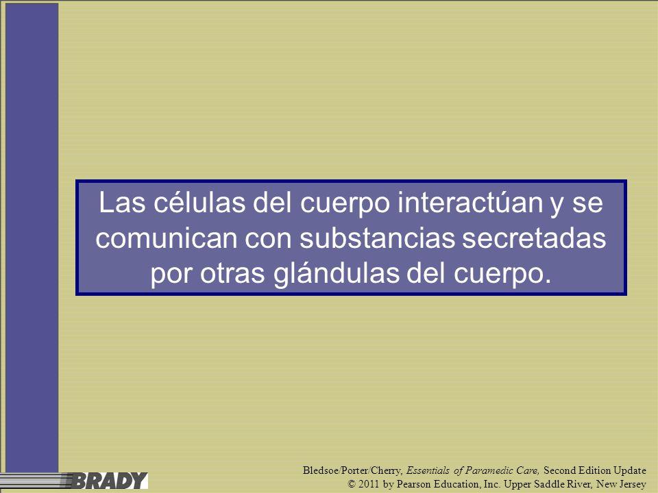 Las células del cuerpo interactúan y se comunican con substancias secretadas por otras glándulas del cuerpo.
