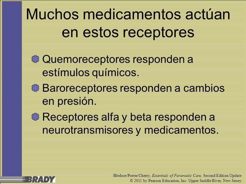 Muchos medicamentos actúan en estos receptores