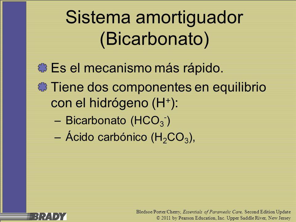 Sistema amortiguador (Bicarbonato)