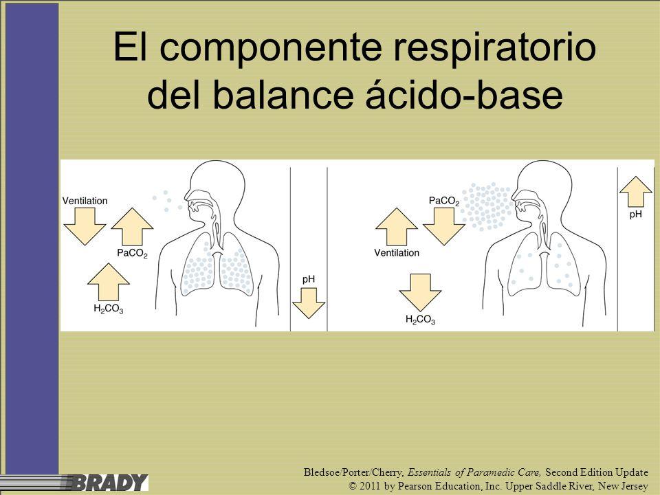 El componente respiratorio del balance ácido-base