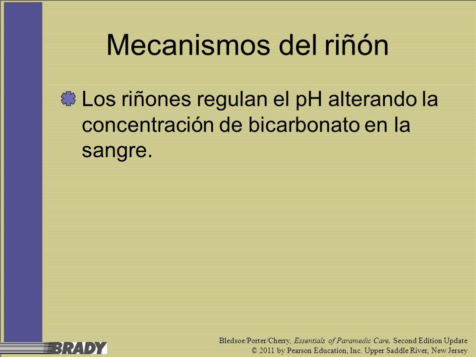 Mecanismos del riñón Los riñones regulan el pH alterando la concentración de bicarbonato en la sangre.