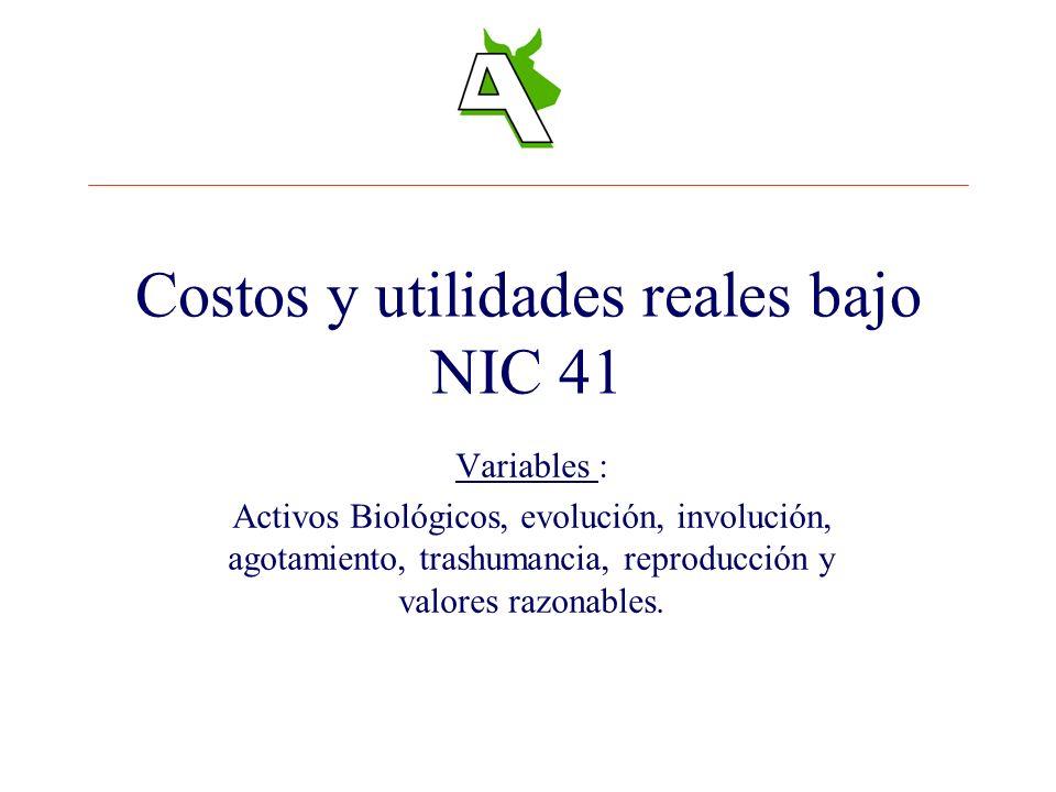 Costos y utilidades reales bajo NIC 41