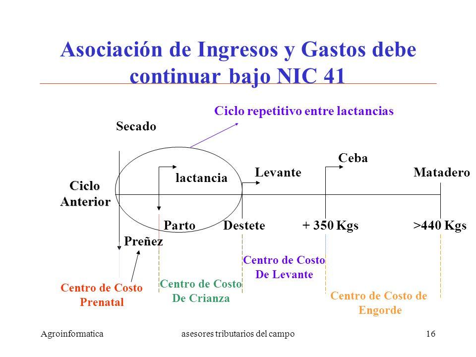 Asociación de Ingresos y Gastos debe continuar bajo NIC 41