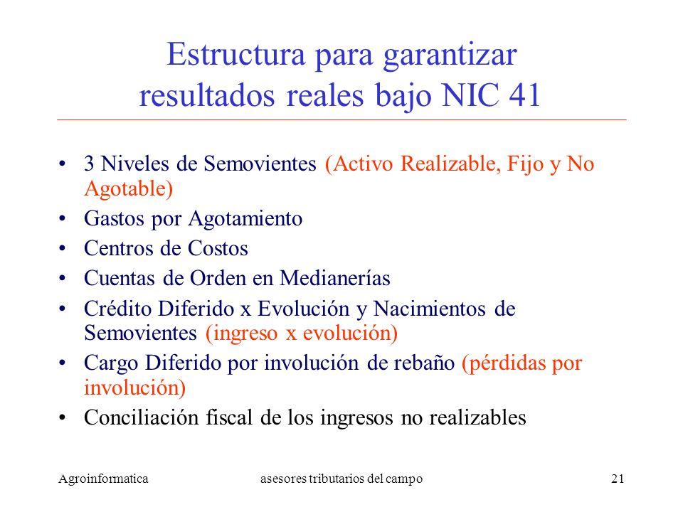 Estructura para garantizar resultados reales bajo NIC 41