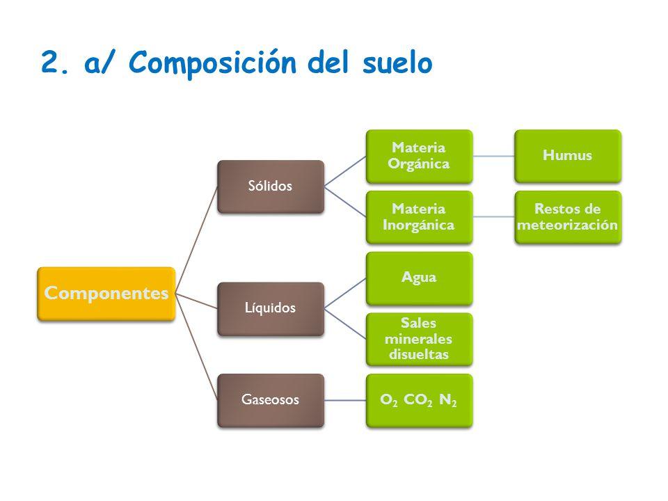 Tema 6 1 el suelo 1 concepto 2 descripci n composici n for Componentes quimicos del suelo
