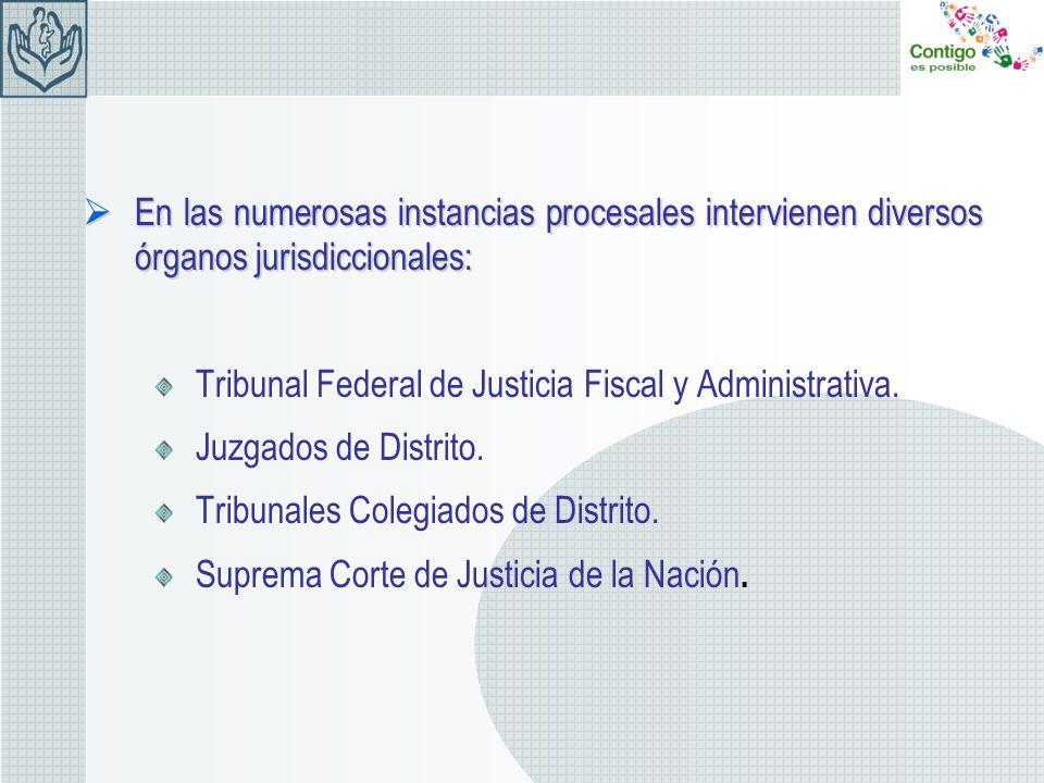 En las numerosas instancias procesales intervienen diversos órganos jurisdiccionales: