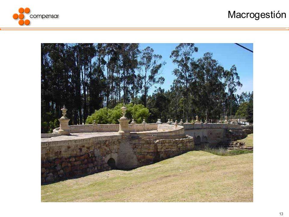 Macrogestión