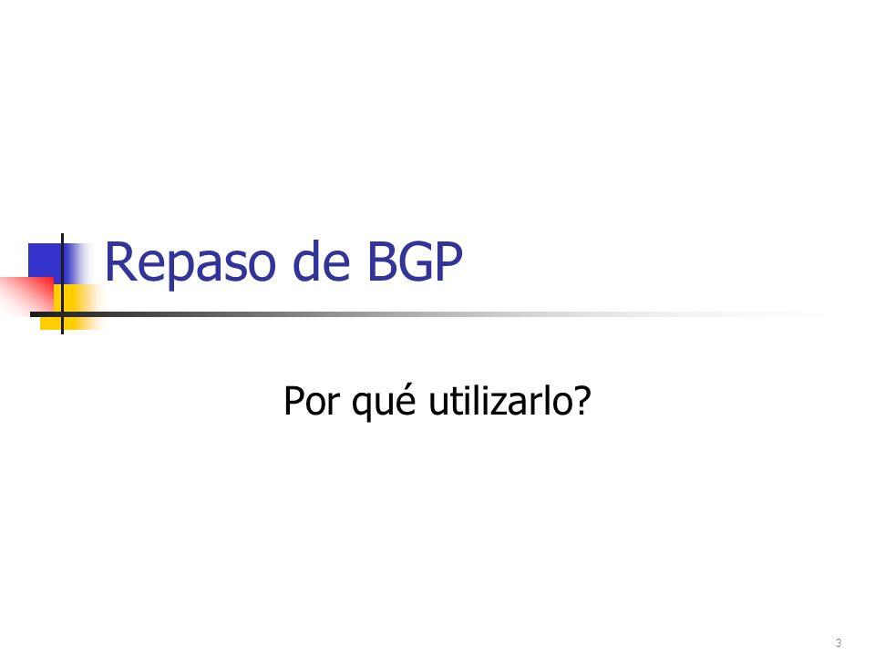 Repaso de BGP Por qué utilizarlo 3